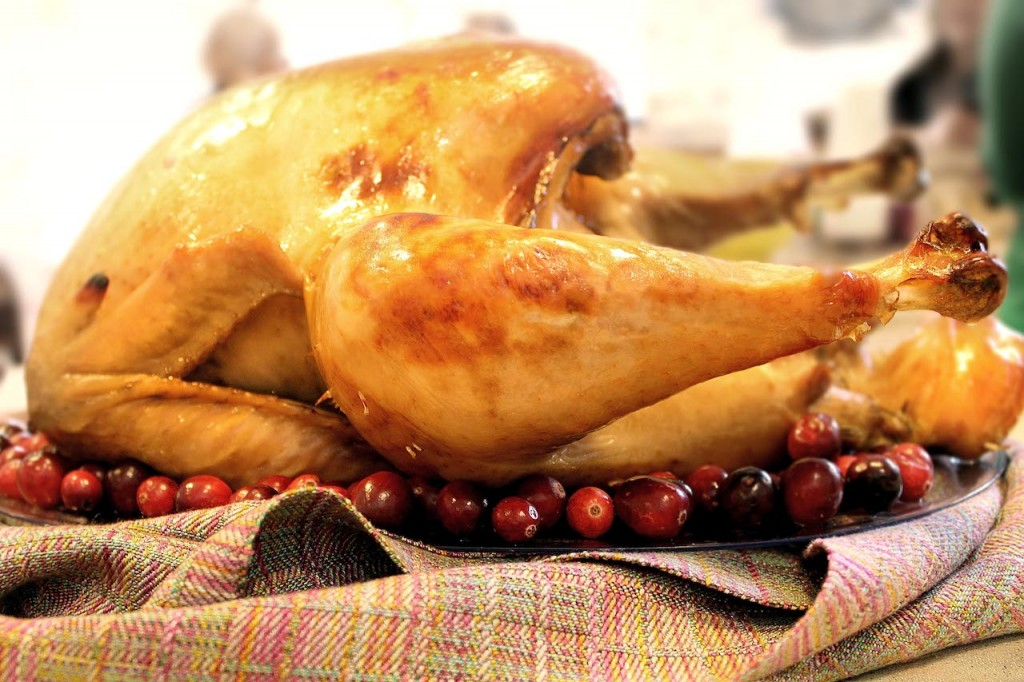 Eight shaft two block twill Tencel scarf sets off the perfect brined and roasted turkey for Thanksgiving dinner.