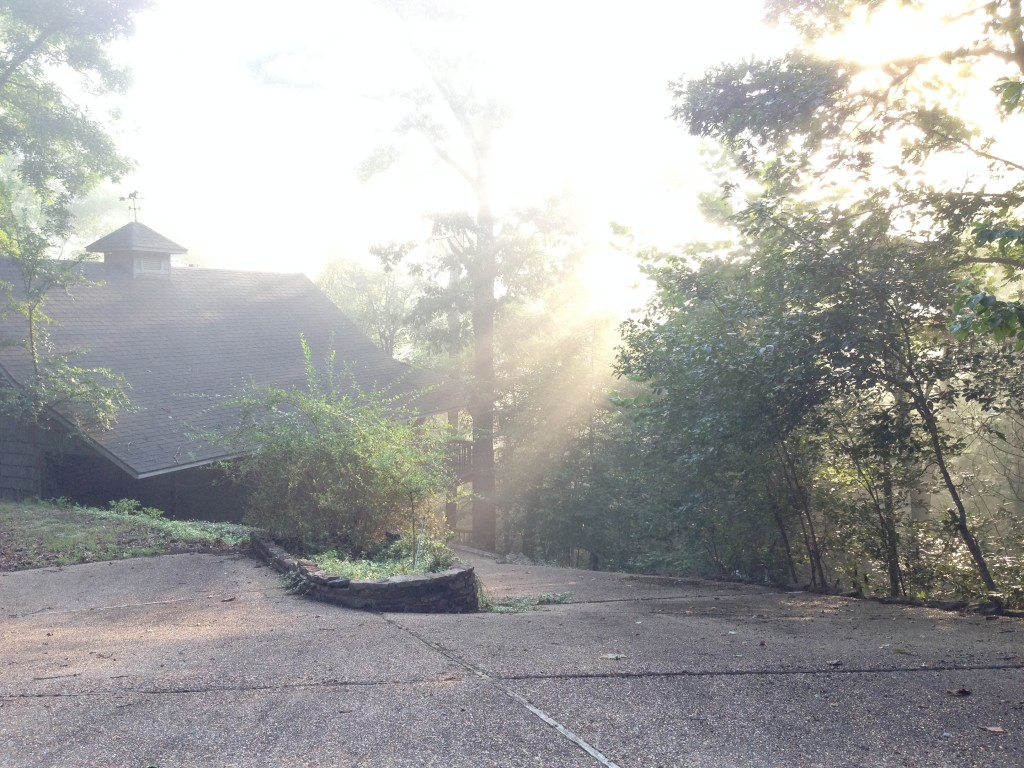 Sunlight in the morning at Arkansas cabin.