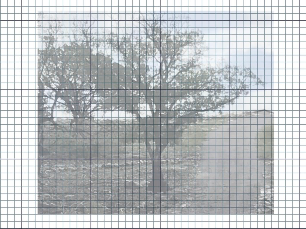 Creating gridded designs in Affinity Photo.