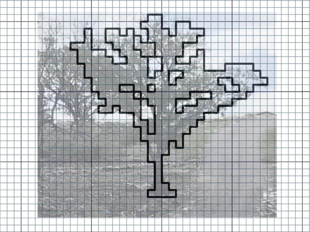 Tracing a tree in Affinity Photo to make a drawloom pattern.